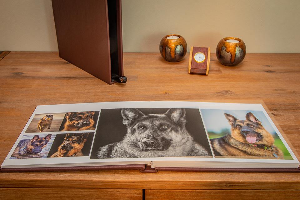 photo album, johnnie dowling photography, dog photographer, sydney pet photography, sydney dog photographer